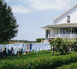 Amish Quilter - Amish Home by Galen Frysinger