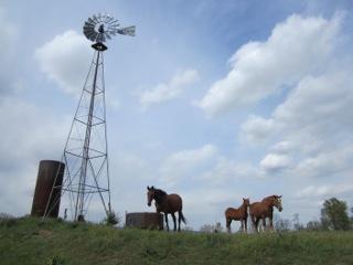 Amish Annie Windmill powered water pump
