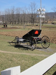 Amish Nancy Buggy